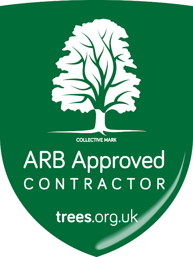 D&B Tree Services Bristol ARB Approved Contractor