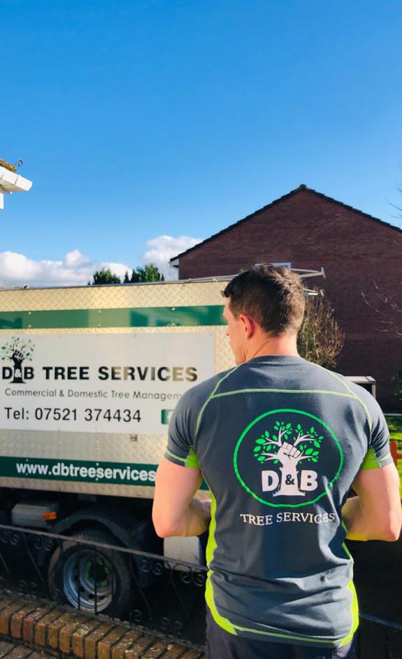 d&B Tree Services bristol signage