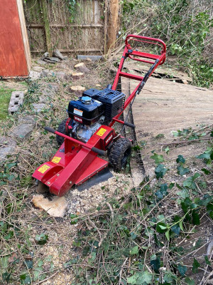 stump removal Chepstow during